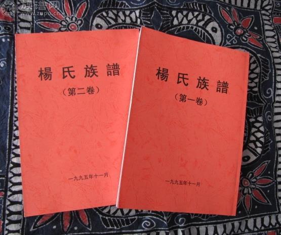 族谱网为您讲述,中华杨氏广西地区辈分详考图片